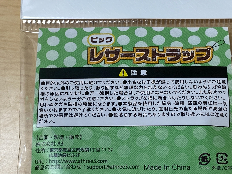 f:id:SeisoSakuya:20210215150018j:image