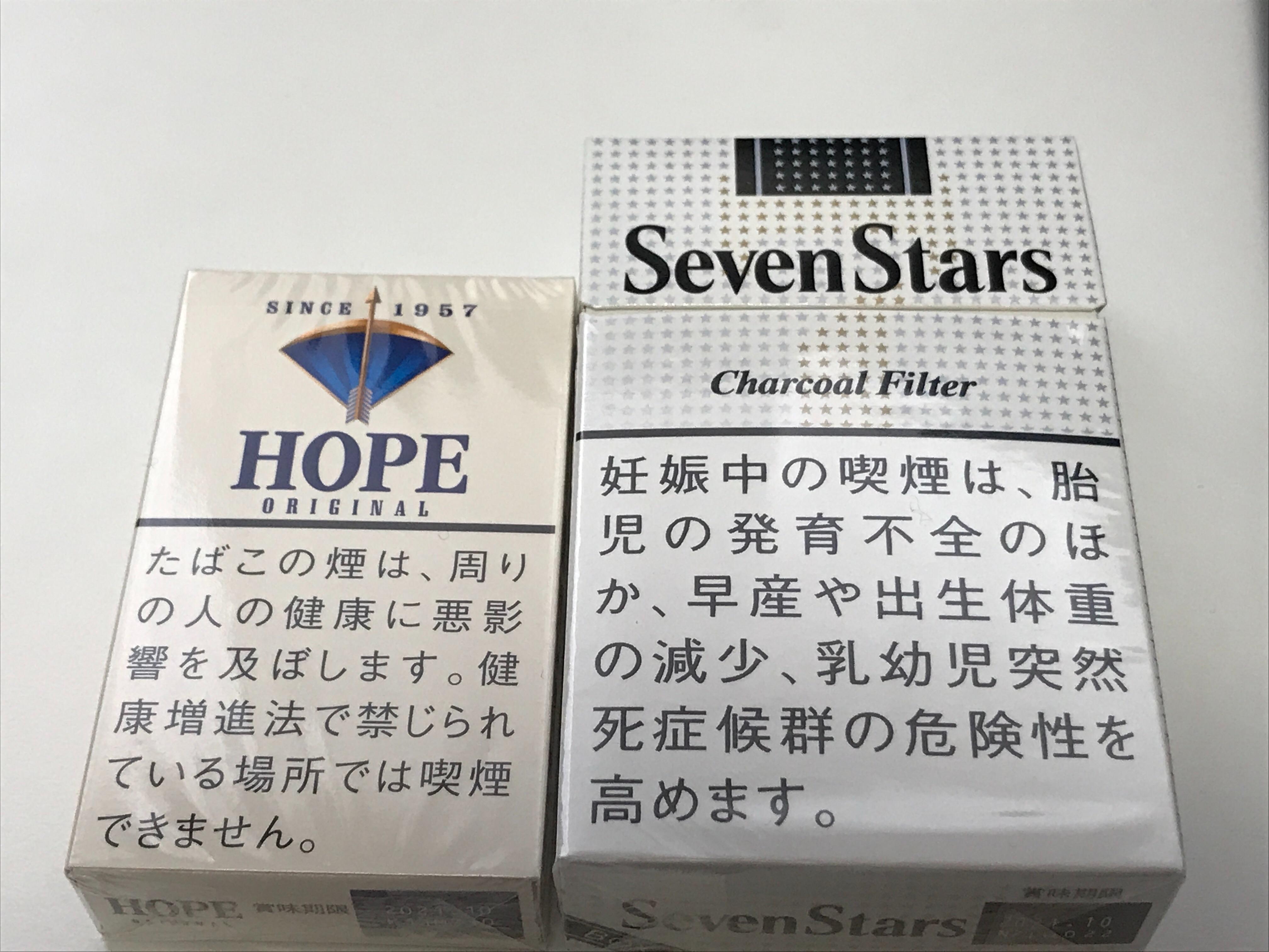 f:id:SeisoSakuya:20210330173230j:image