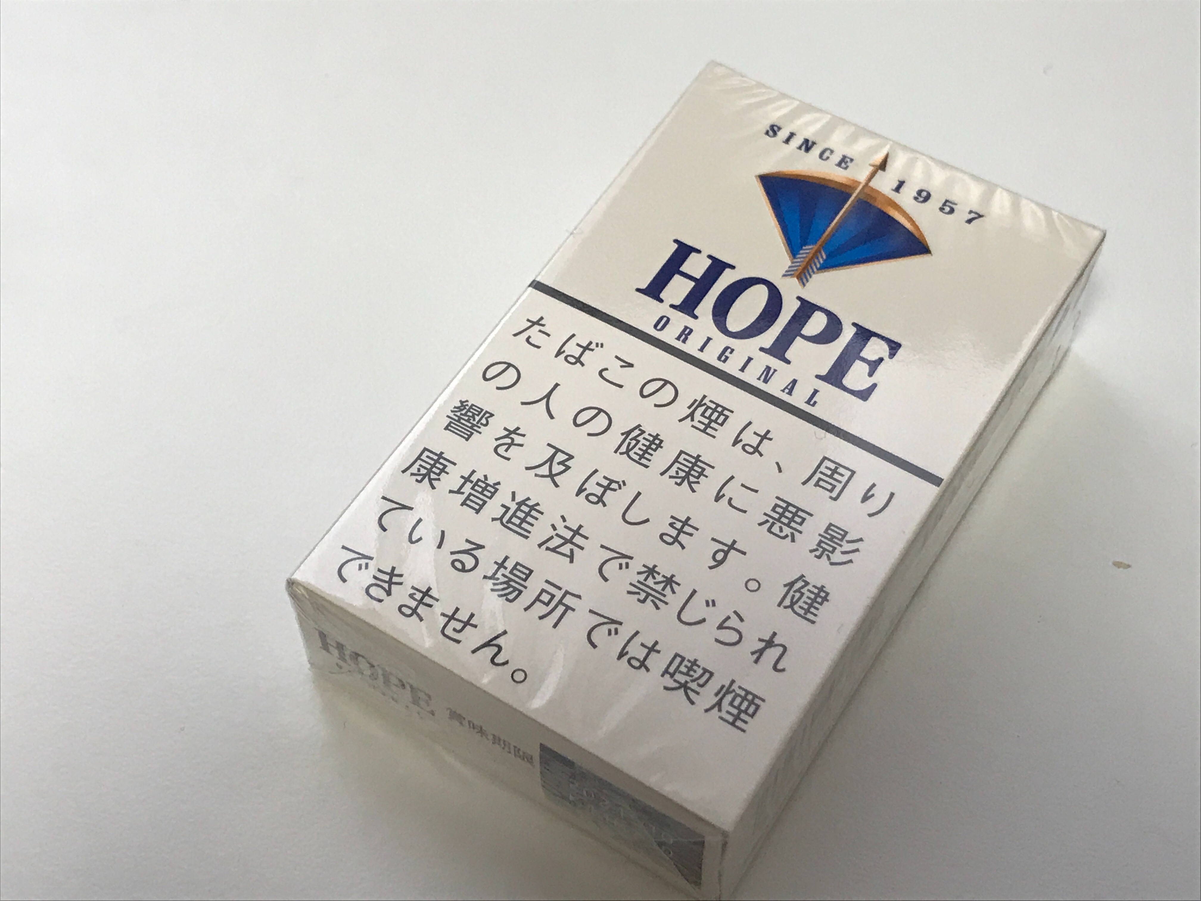 f:id:SeisoSakuya:20210330173239j:image