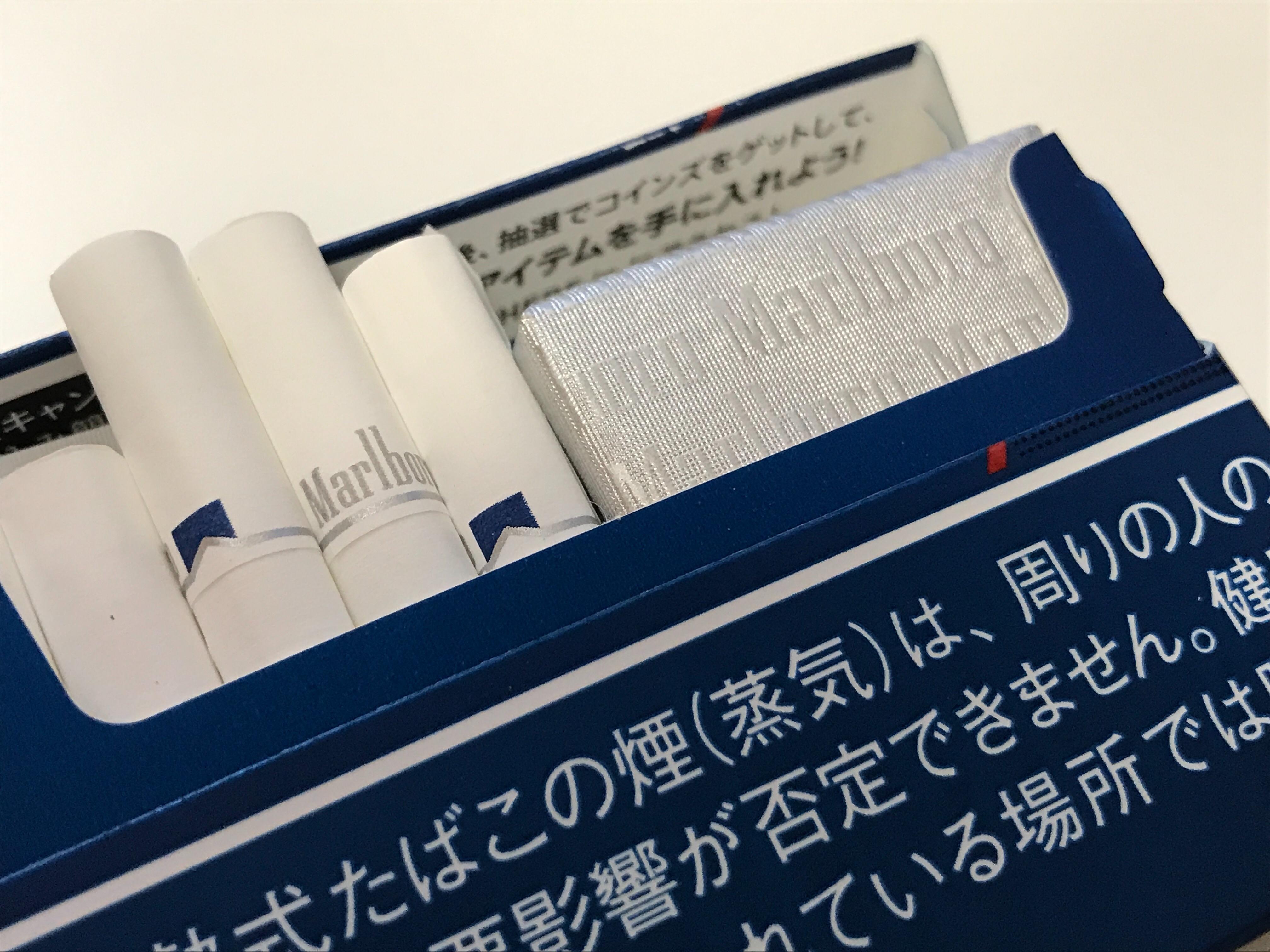 f:id:SeisoSakuya:20210401220100j:image