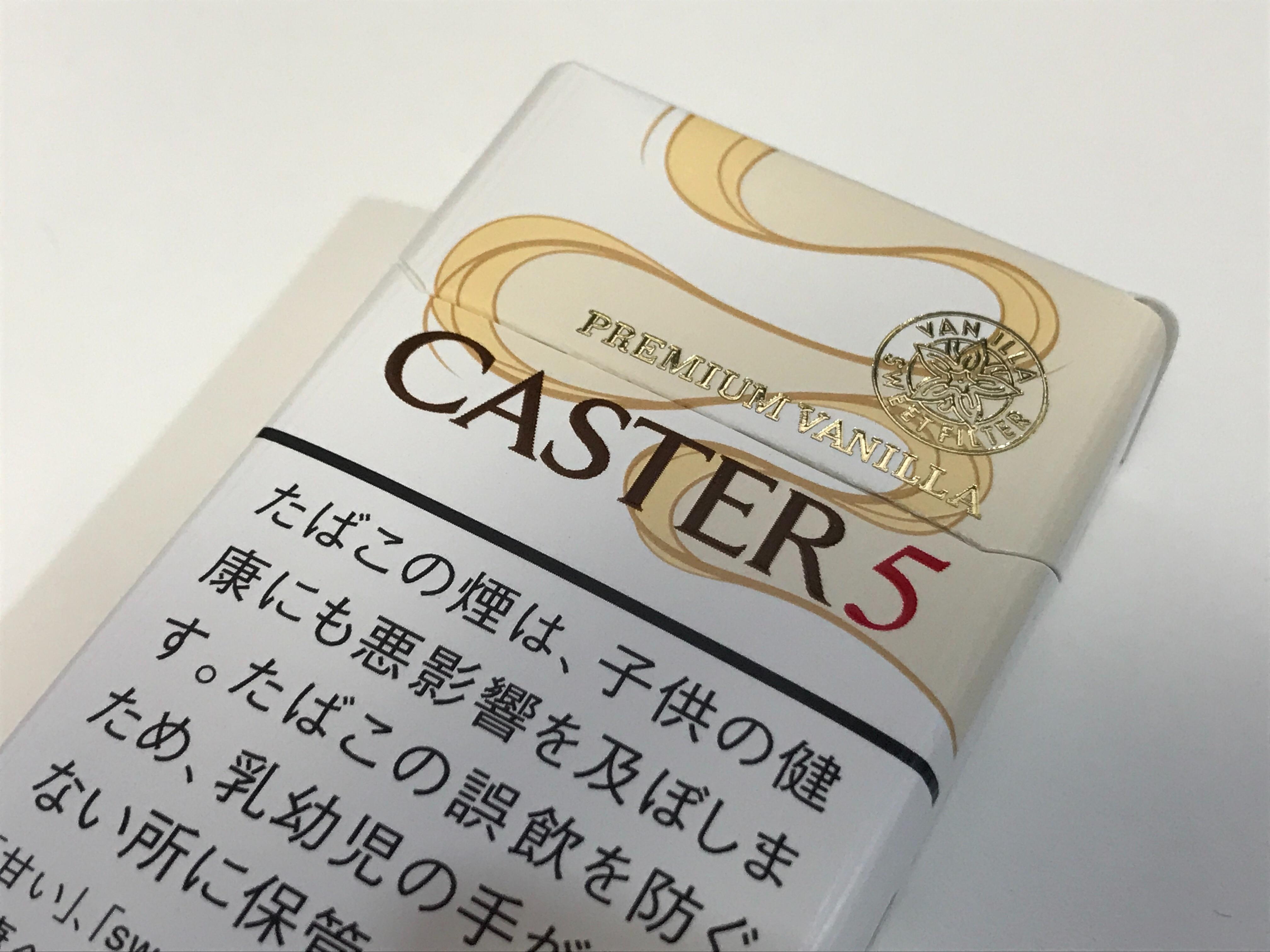 f:id:SeisoSakuya:20210406195355j:image