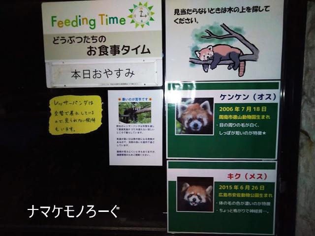 nogeyama-zoo-20190813-8