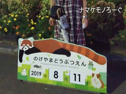 nogeyama-zoo-20190813-9