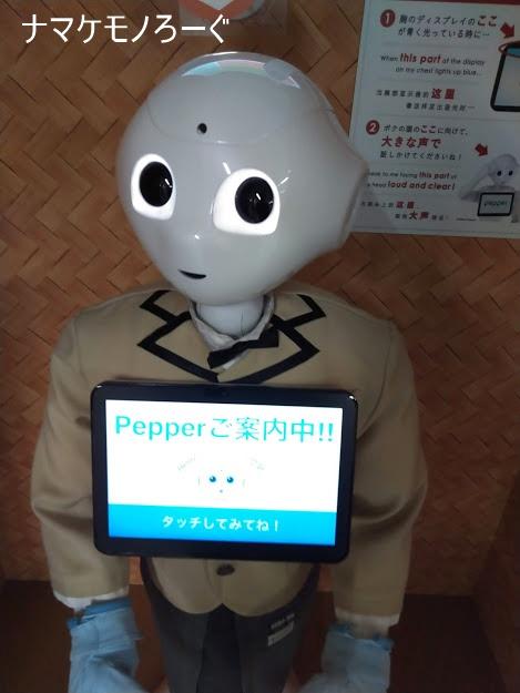 pepper@Yokohama-Sta.1
