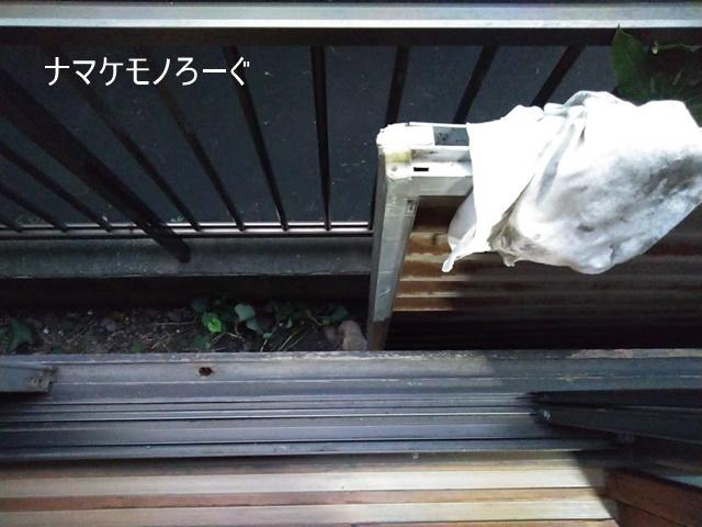 typhoon-No.15