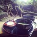 [茶] té (茶)