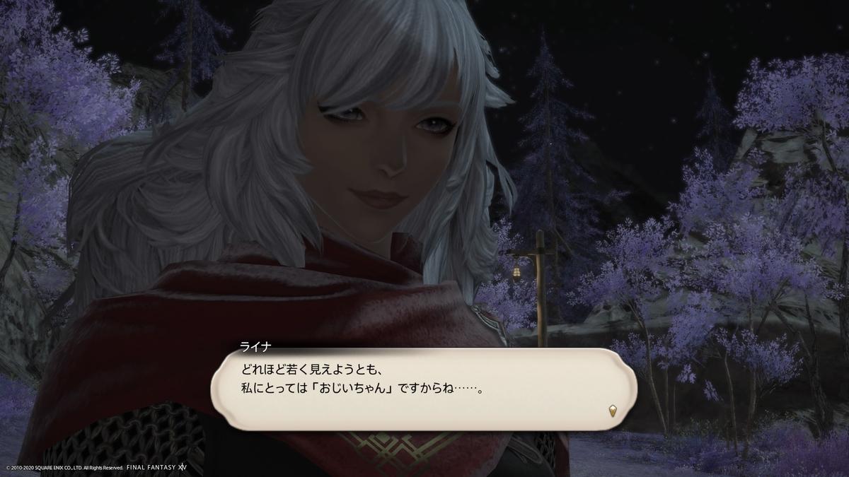 f:id:Shachiku:20201114191314j:plain