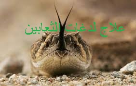 f:id:ShaimaHussein:20170621092427j:plain