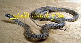 f:id:ShaimaHussein:20170621092514j:plain