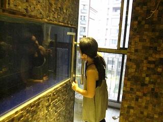 f:id:Shanghai_Interior_Design:20140910175500j:image