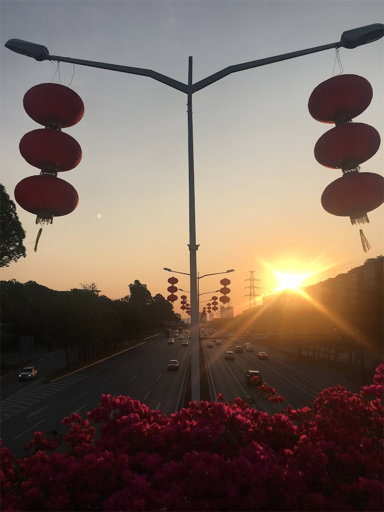 f:id:Shenzhen_rice:20210323102111j:image