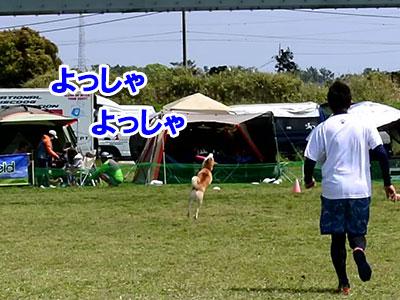 f:id:Shiba-MontBlanc:20190627220154j:plain