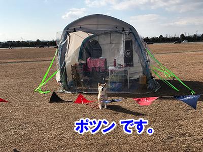 f:id:Shiba-MontBlanc:20200307223231j:plain