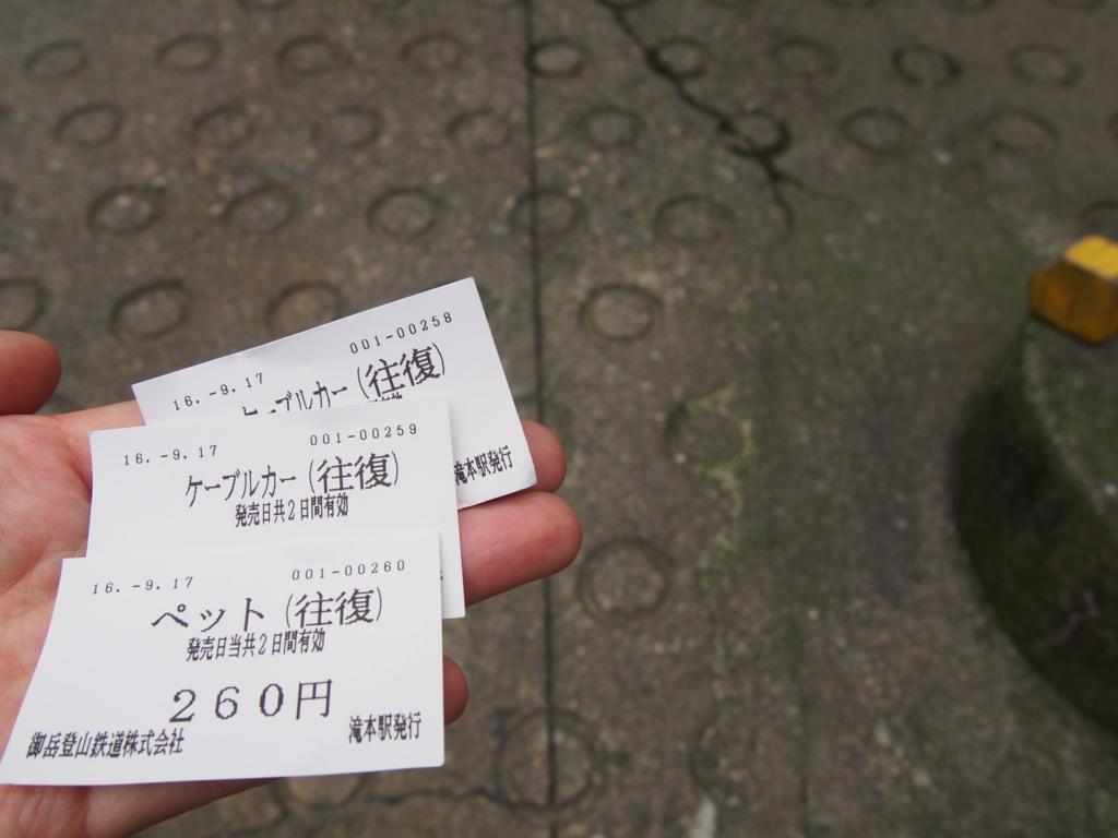 f:id:ShibaKoro:20160917120602j:plain