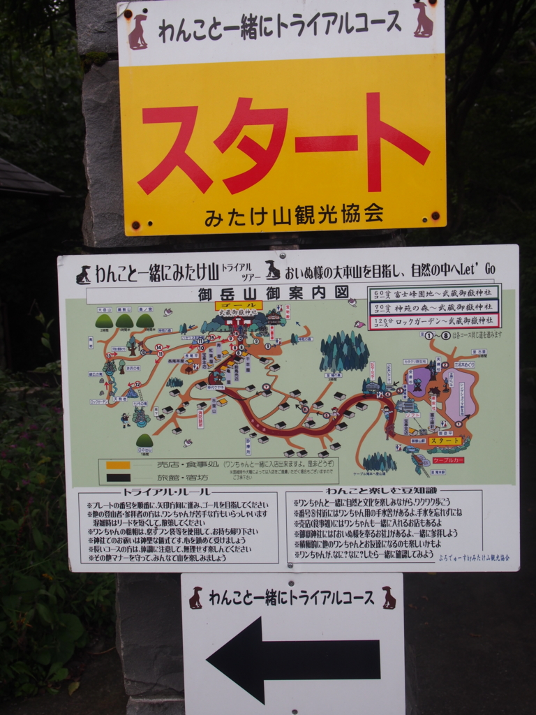 f:id:ShibaKoro:20160917144656j:plain