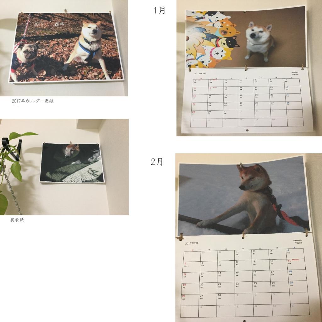 f:id:ShibaKoro:20170104232224j:plain