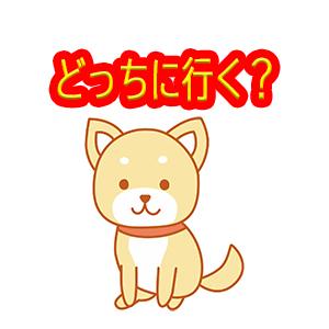 f:id:ShibainuSasuke-and-Ash:20210218163646j:plain
