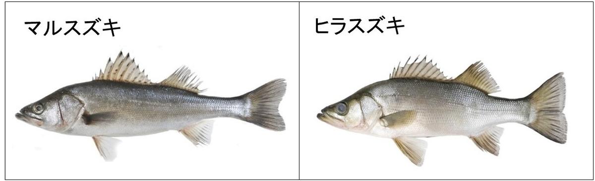 f:id:Shigehara_Nishiki:20200518233651j:plain