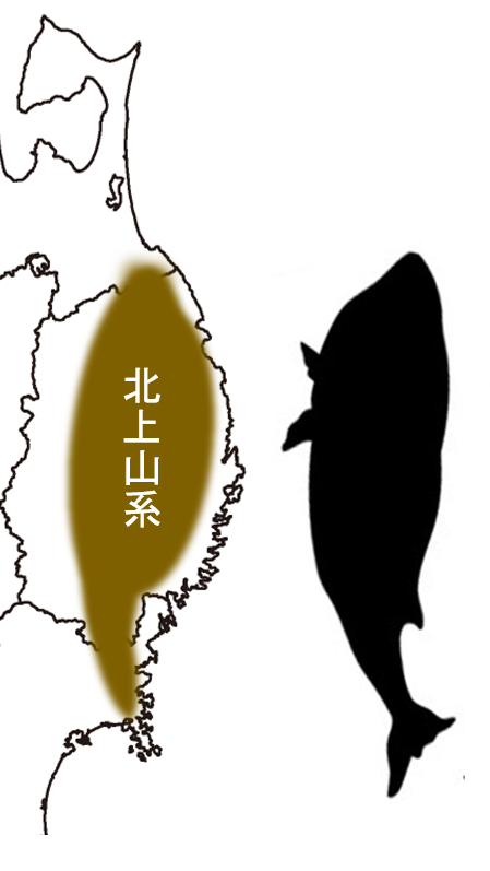 f:id:Shimafukurou:20210614151403p:plain