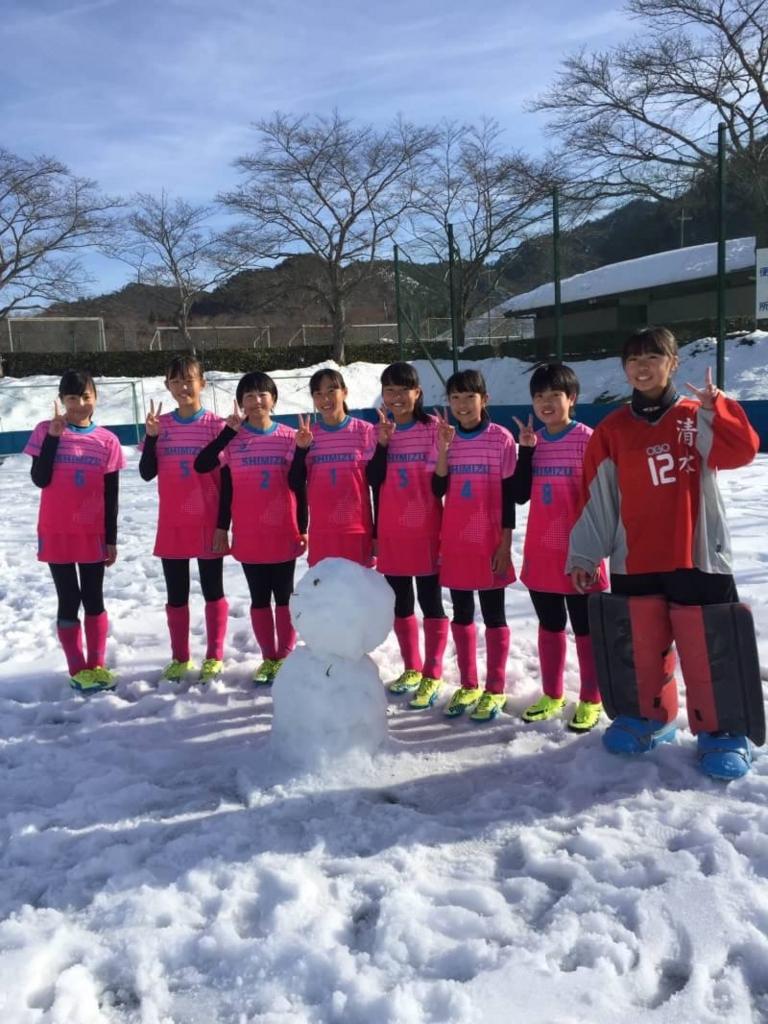 f:id:Shimizucho-hockey:20170129194457j:plain
