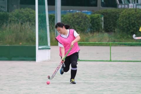 f:id:Shimizucho-hockey:20170701100608j:plain