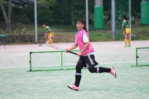 f:id:Shimizucho-hockey:20170701112626j:plain