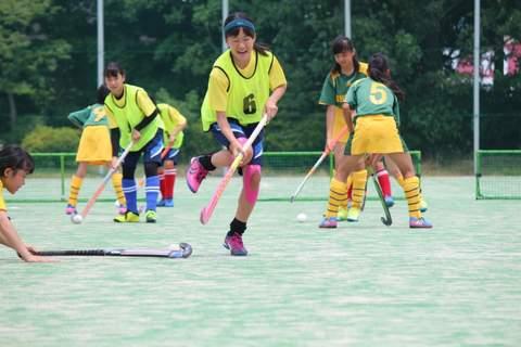 f:id:Shimizucho-hockey:20170701130857j:plain