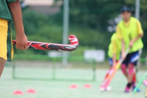 f:id:Shimizucho-hockey:20170701130921j:plain