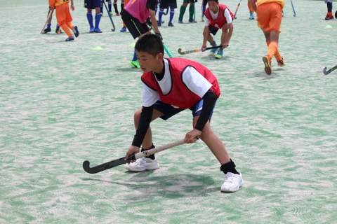 f:id:Shimizucho-hockey:20170701131901j:plain