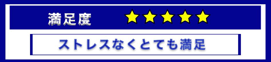 f:id:Shin1234:20191231194035p:plain