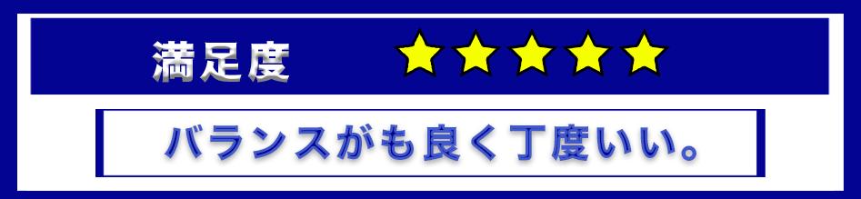 f:id:Shin1234:20191231203210p:plain
