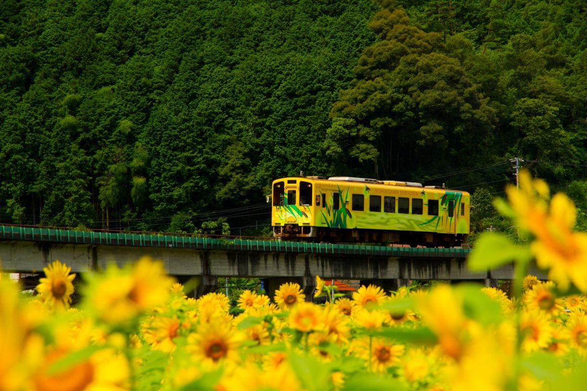 f:id:Shinagawa-manabu:20200727115655j:plain