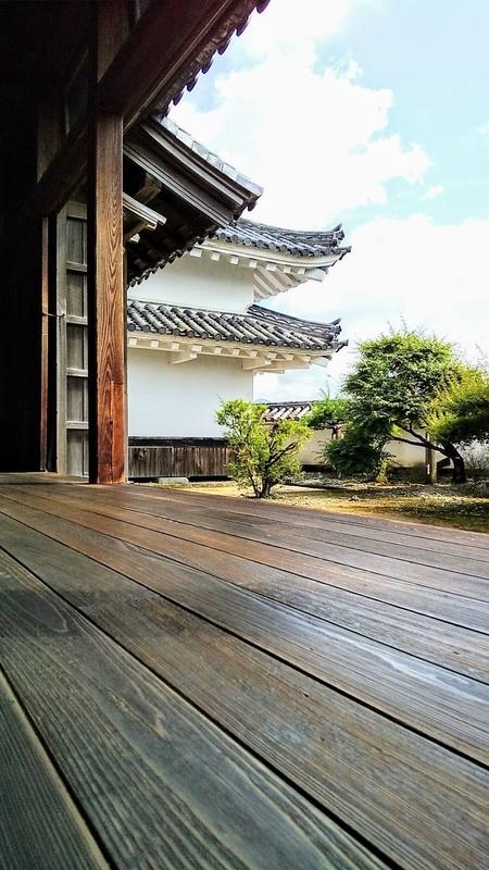 f:id:Shinagawa-manabu:20201113065619j:plain