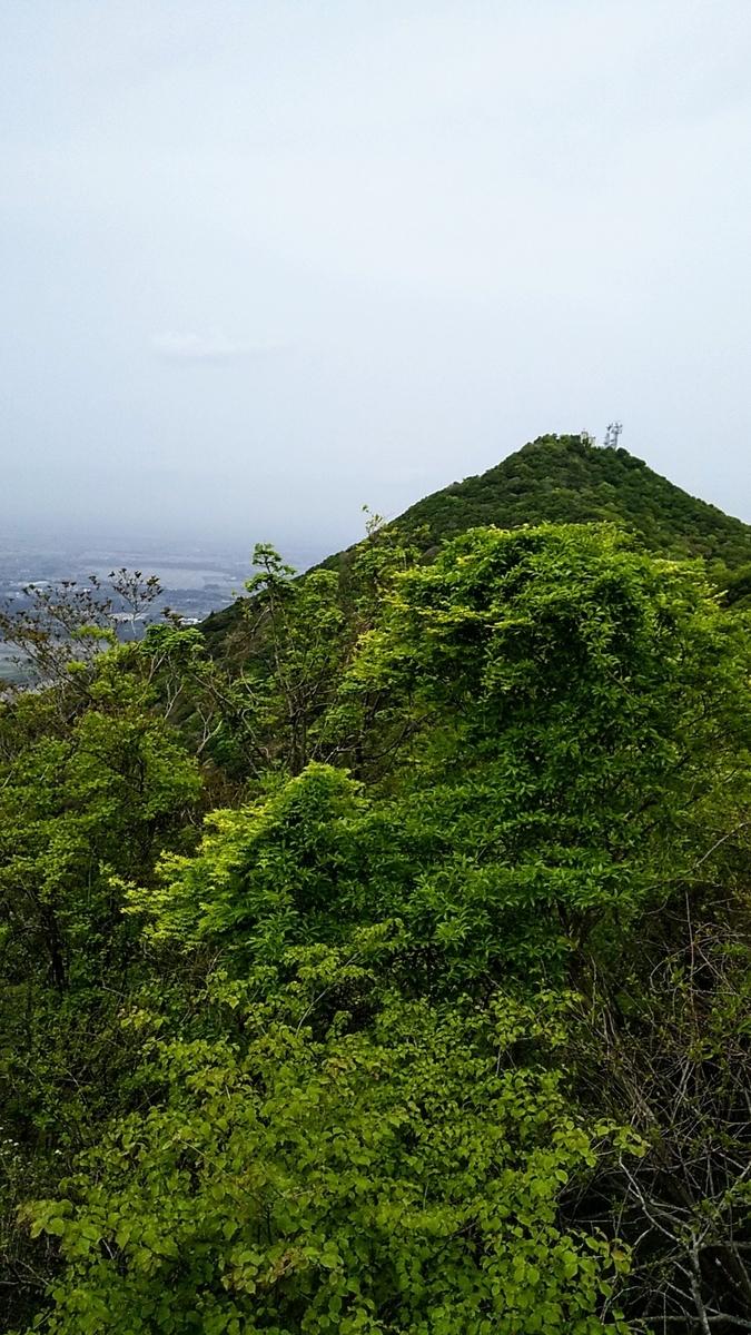 f:id:Shinagawa-manabu:20210531220344j:plain