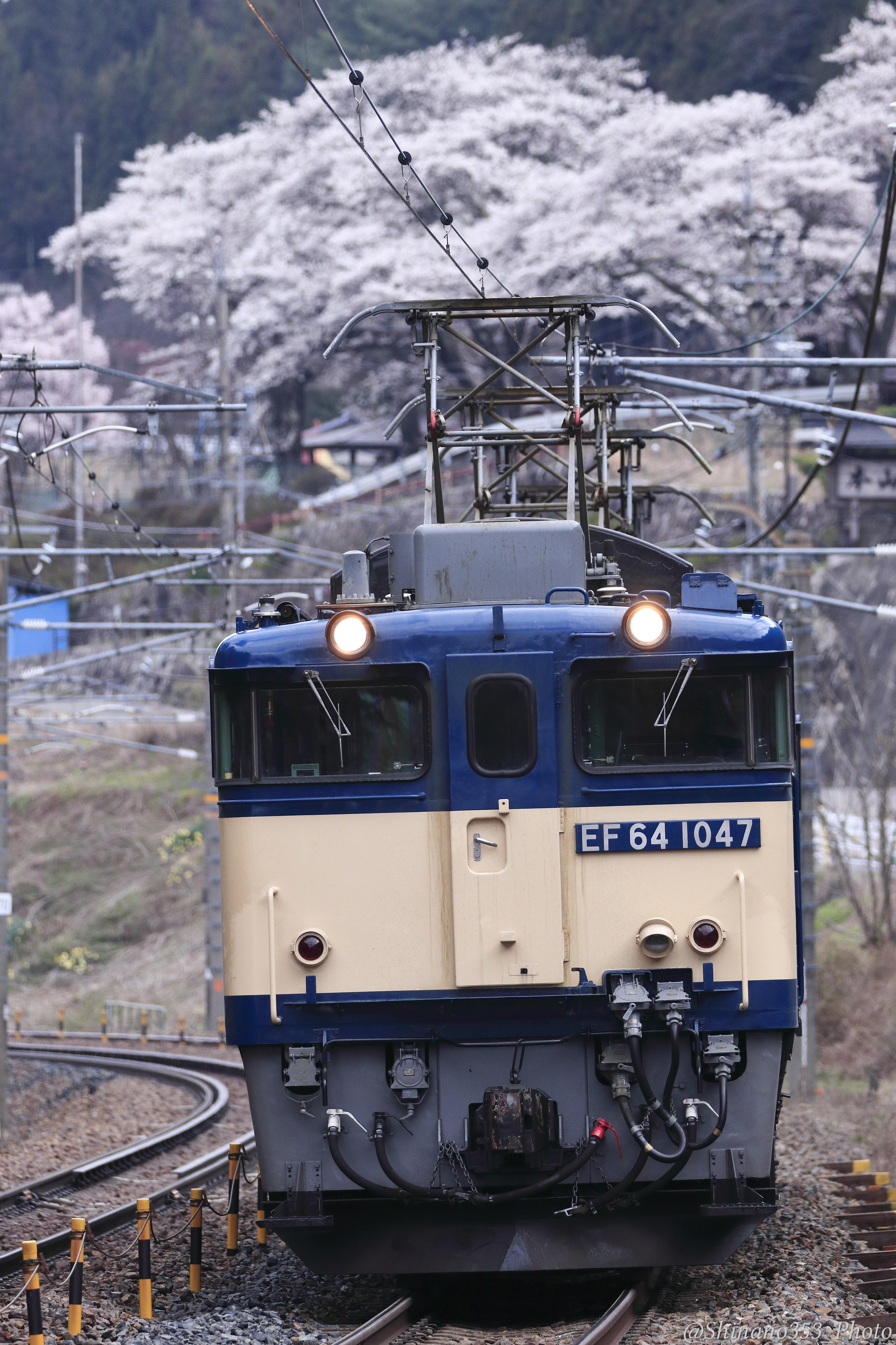 f:id:Shinano353:20210420225040j:plain