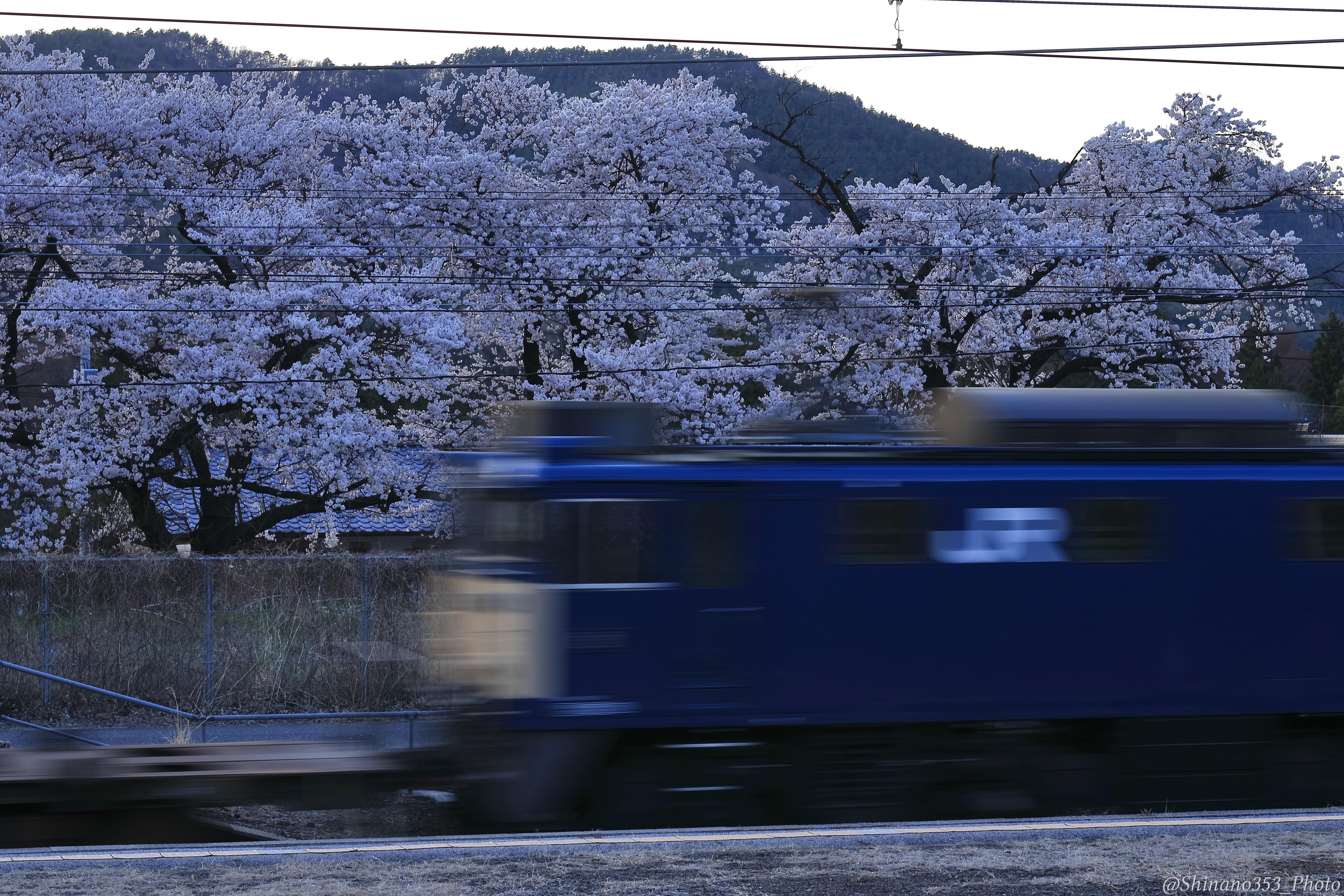 f:id:Shinano353:20210705144702j:plain