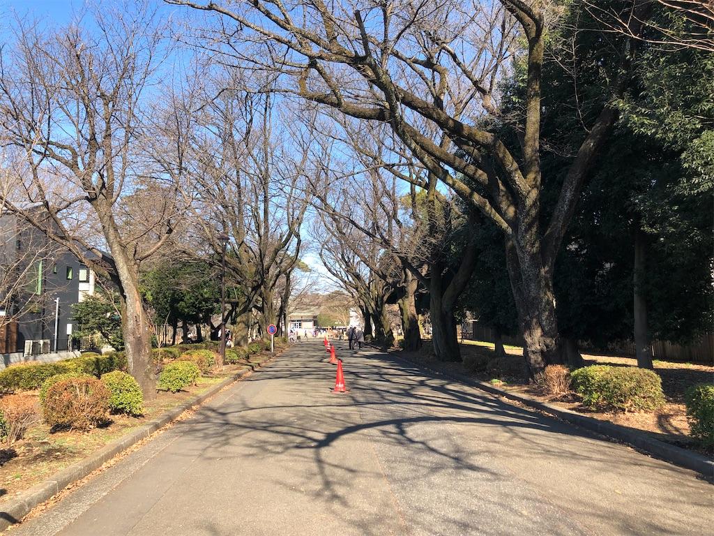 f:id:Shinjuku_3chome:20210219103224j:image