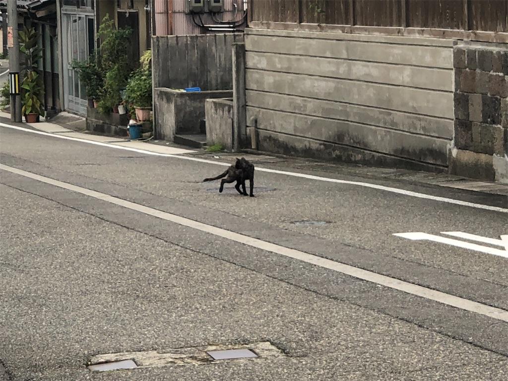 f:id:Shinjuku_3chome:20210912201755j:image