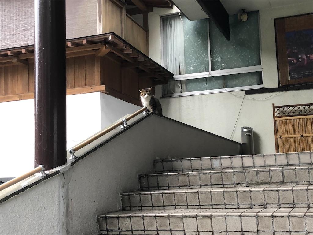 f:id:Shinjuku_3chome:20210921194231j:image