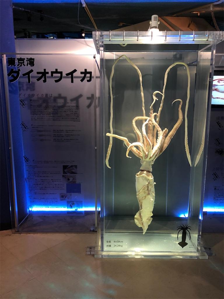 f:id:Shinjuku_3chome:20211011154445j:image