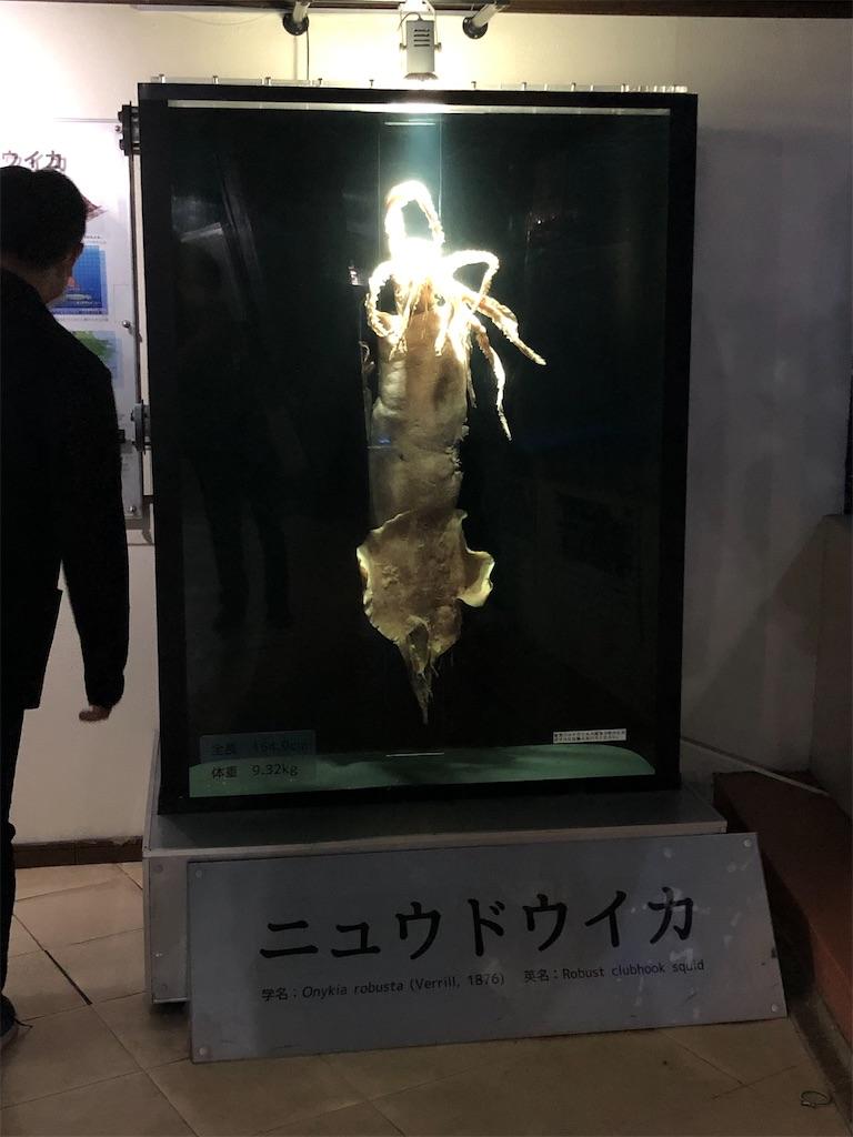 f:id:Shinjuku_3chome:20211011154447j:image
