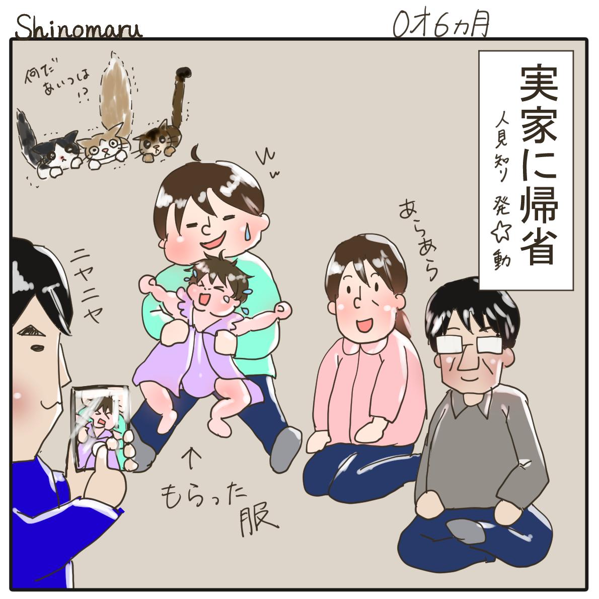 f:id:Shinomaru:20210510223011p:plain