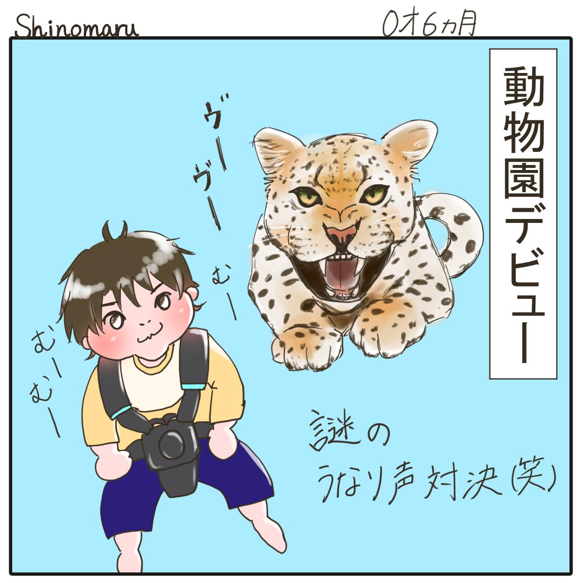f:id:Shinomaru:20210510223022p:plain