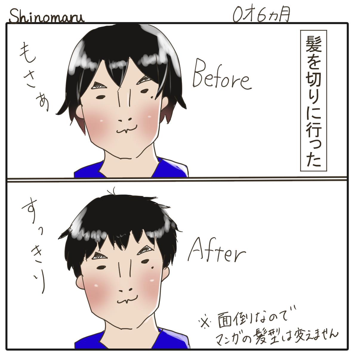 f:id:Shinomaru:20210510223044p:plain