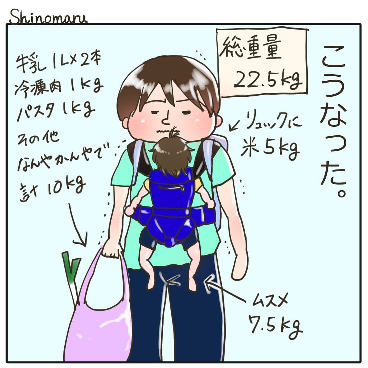 f:id:Shinomaru:20210517185713j:plain