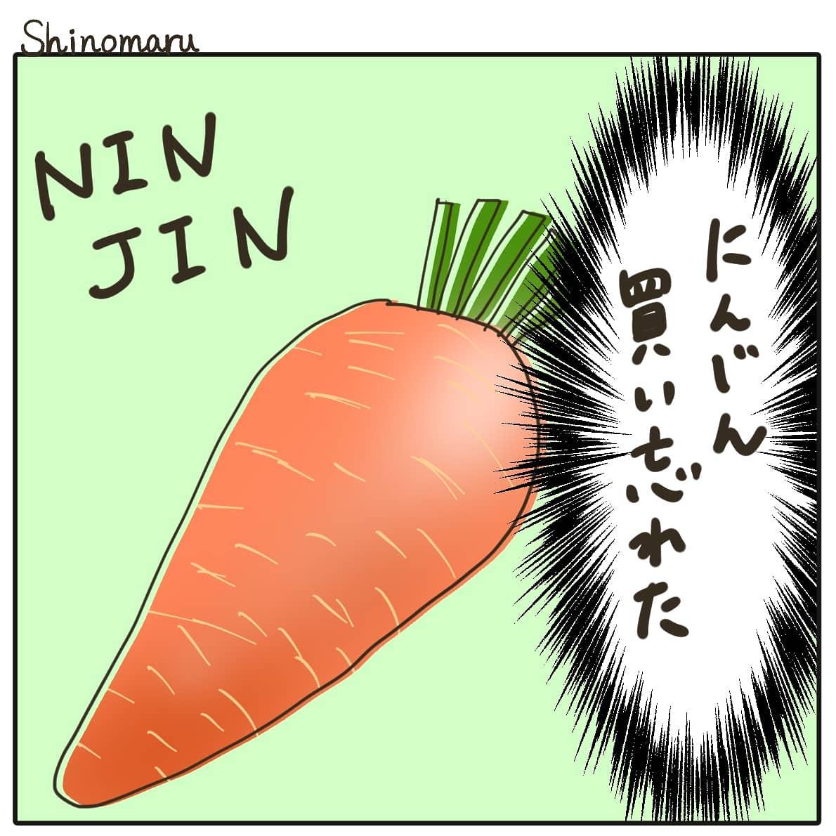 f:id:Shinomaru:20210517185723j:plain