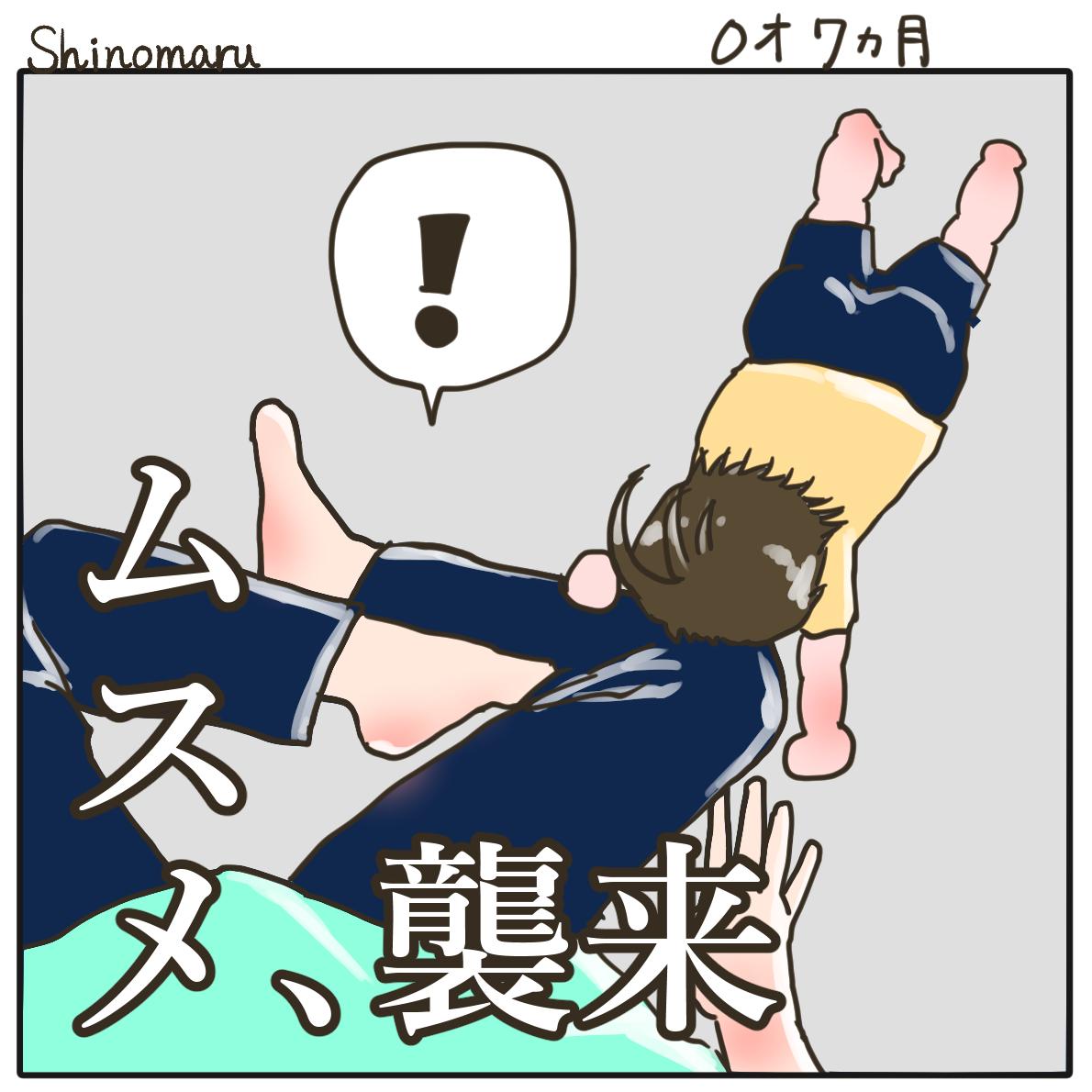 f:id:Shinomaru:20210602214656p:plain