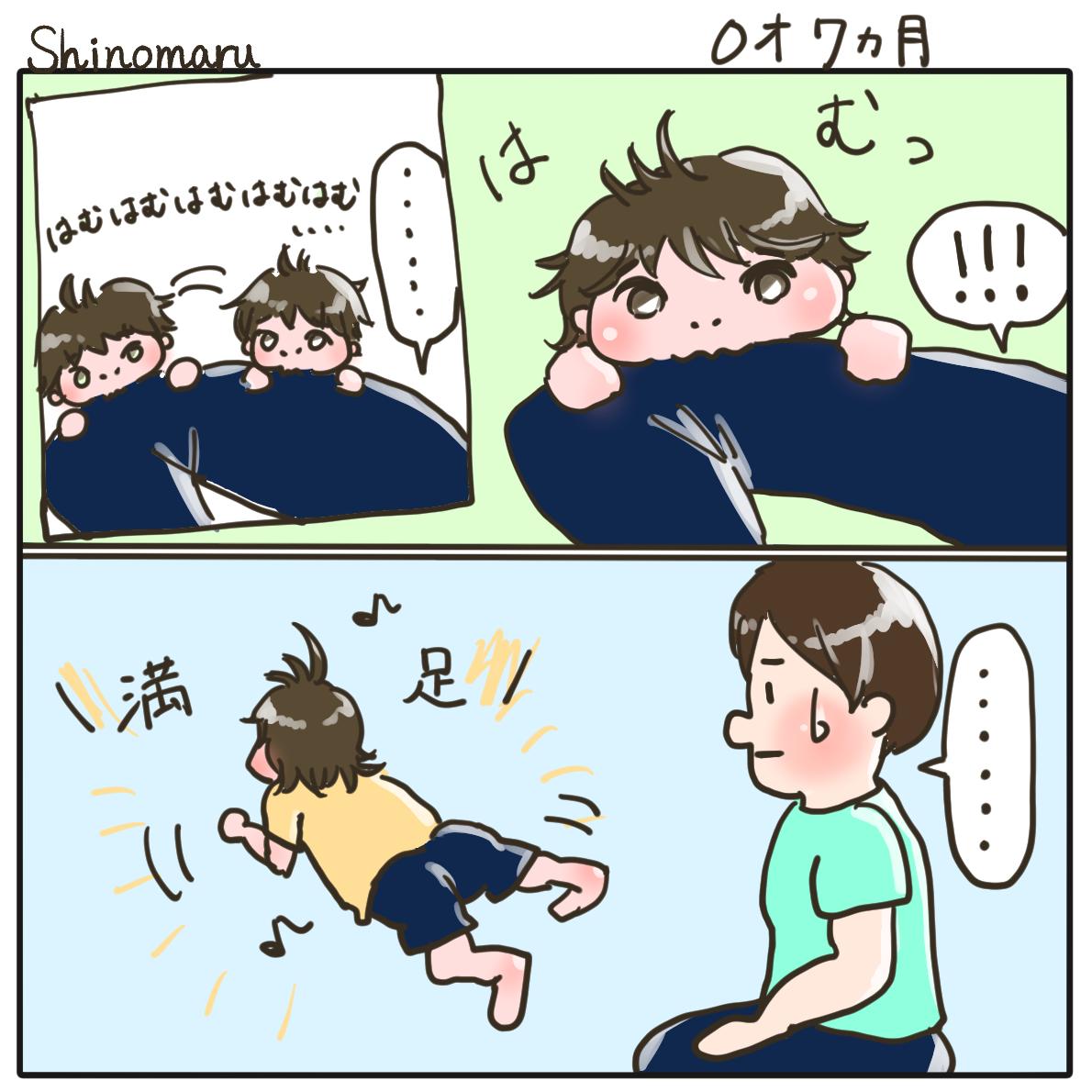 f:id:Shinomaru:20210602214712p:plain