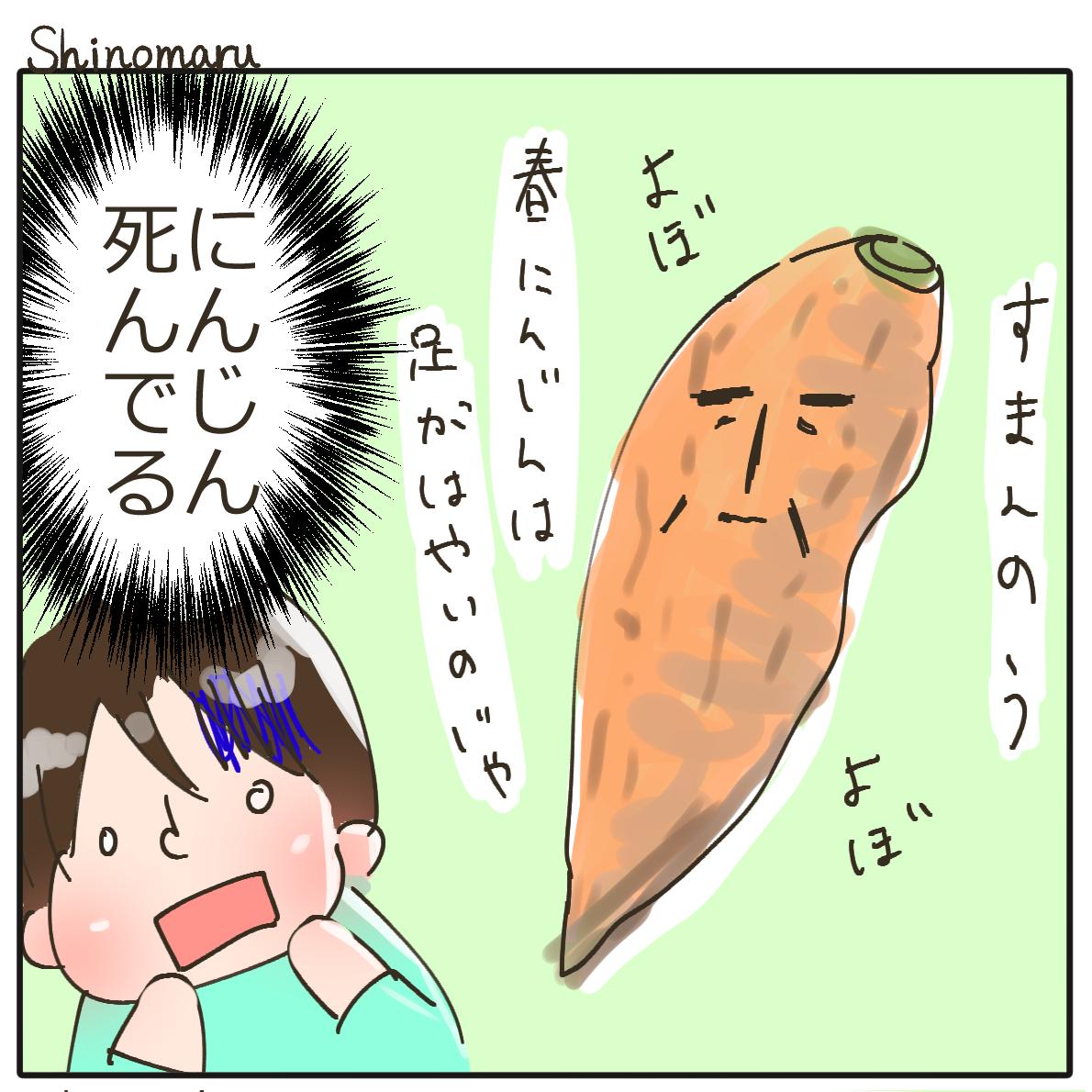 f:id:Shinomaru:20210604221741p:plain
