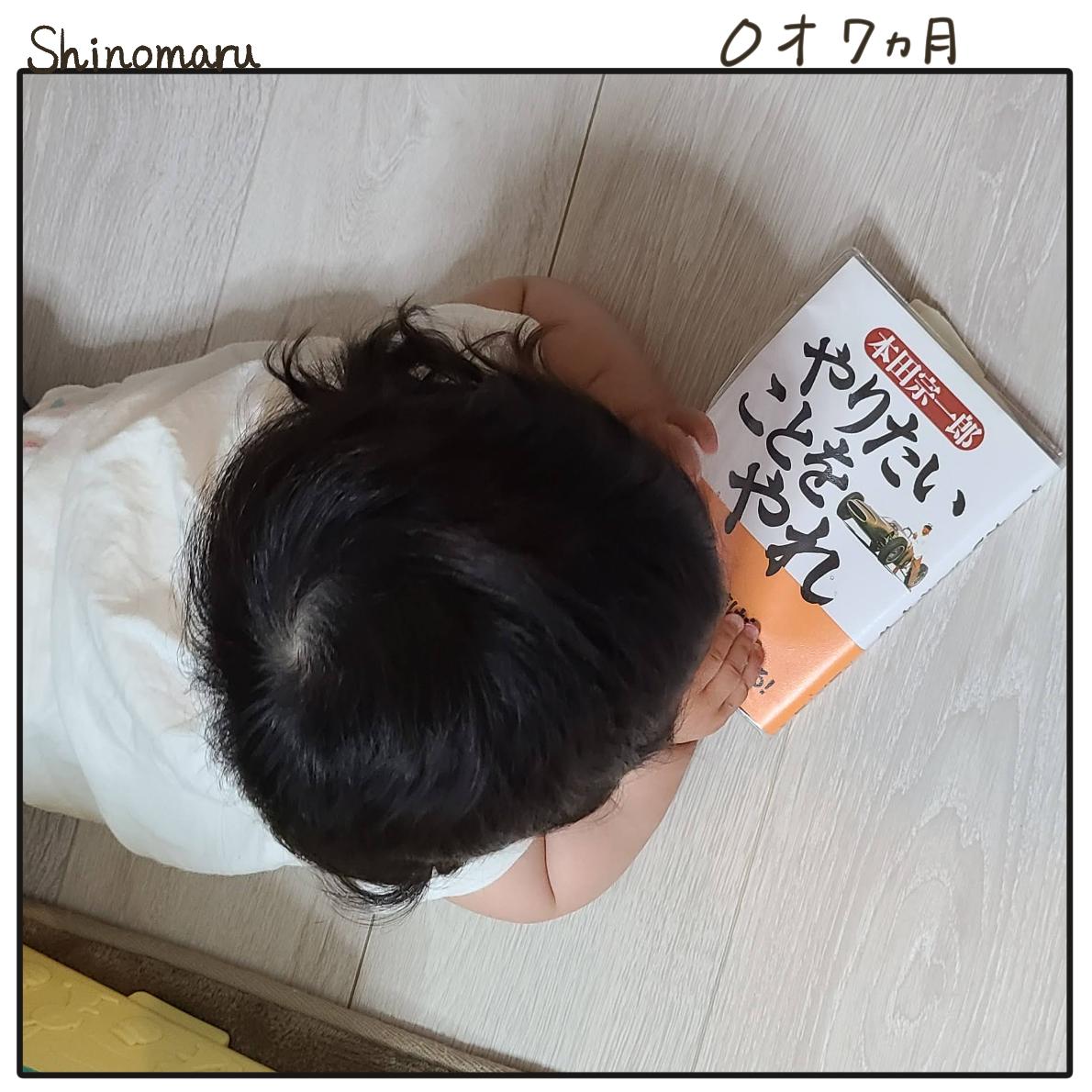 f:id:Shinomaru:20210608221751p:plain